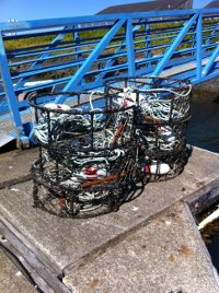 Dungeness crab pots at the Newport's Historic Bayfront